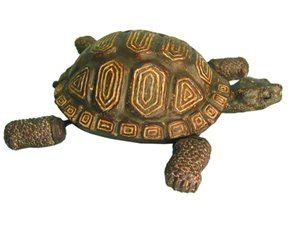 Tortoise Floater